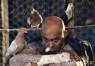 فیلم مجازات | جمشید هاشم پور در فیلم مجازات